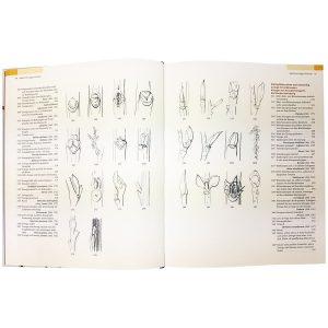 Beispielseite mit verschiedenen Zeichnungen