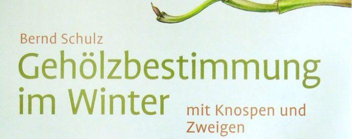 """Buchtitel zu """"Gehölzbestimmung im Winter mit Knospen und Zweigen"""""""