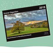 """Cover des Kalenders """"Grüne Giganten - Baumriesen in Norddeutschland"""""""