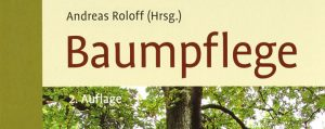 190228_Andreas-Roloff_Baumpflege-header