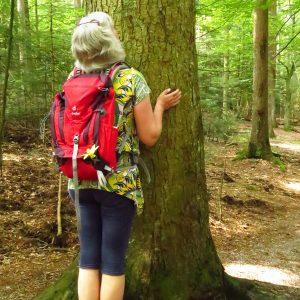 Frau steht am Baumstamm und schaut in die Höhe.