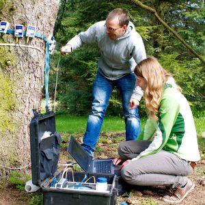 Das Studium der Arboristik