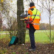 Ein Mann in einer Warnjacke begutachtet einen Baum.