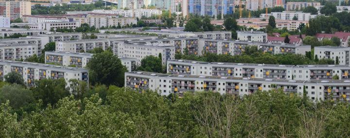 Baumbad: Gießpatenschaften für Bäume